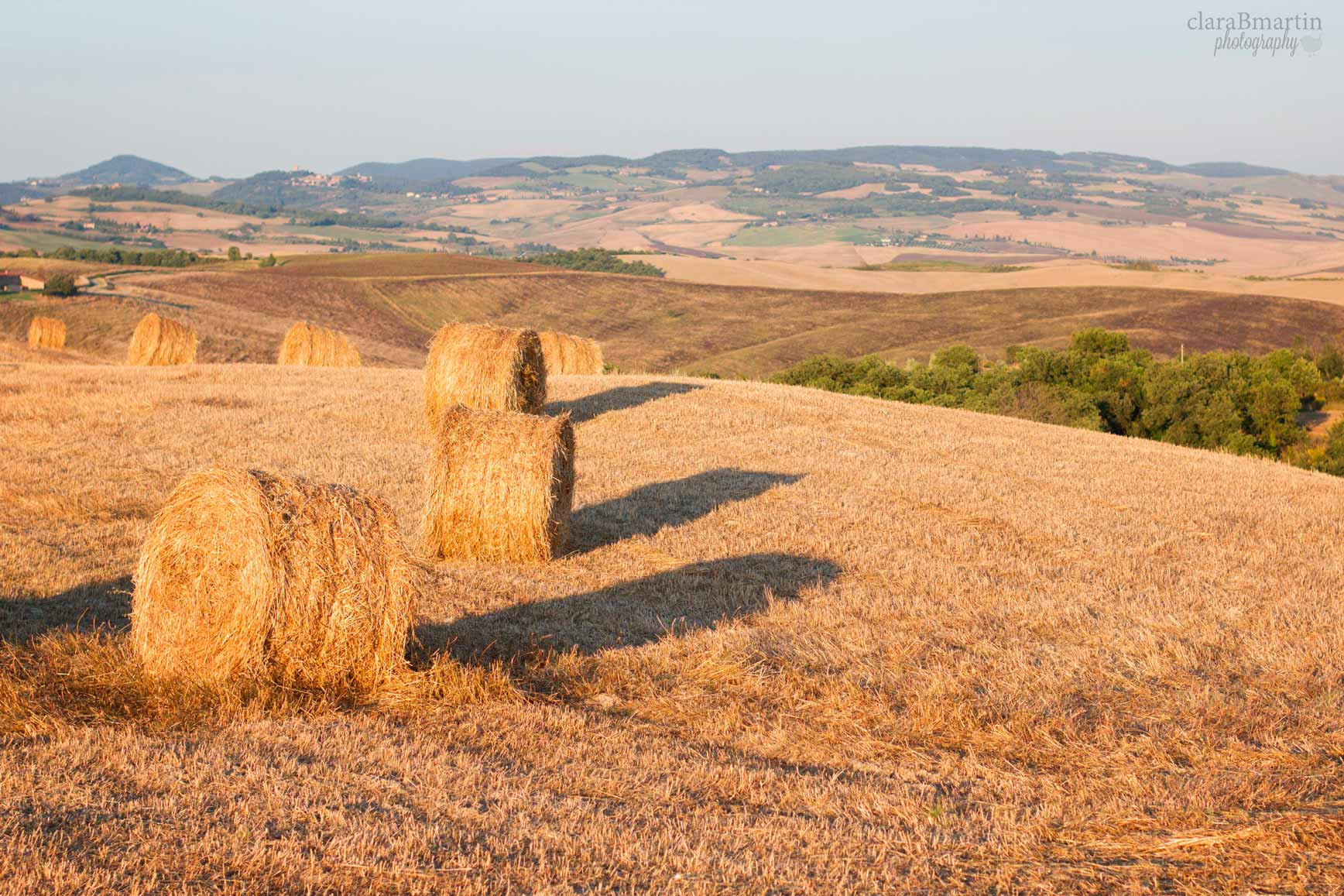 Toscana_claraBmartin11