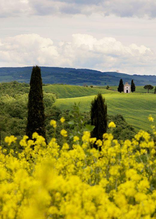 5 planes para enamorarte de La Toscana