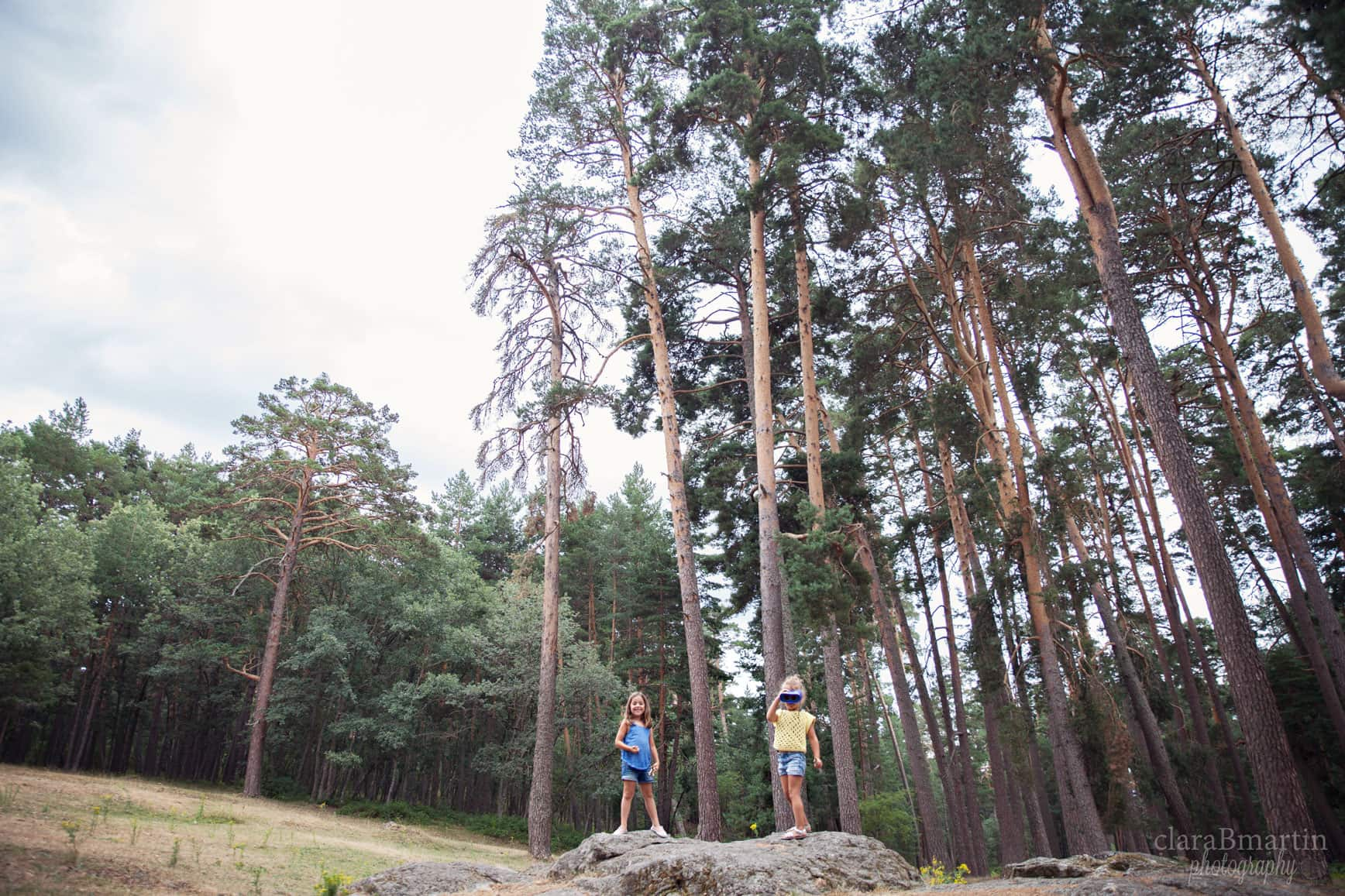 Bosques cerca de Madrid para ir con niños - Boca del Asno