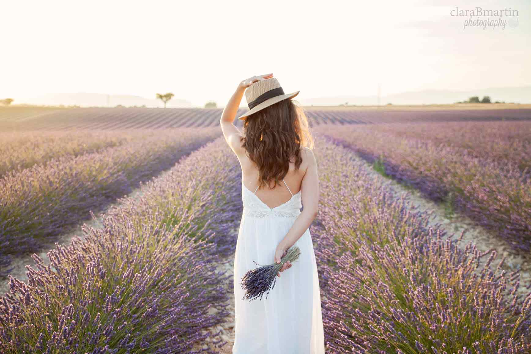 Lavender-fields-Provence-claraBmartin07