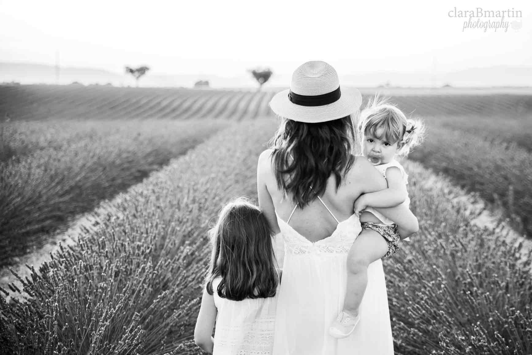 Lavender-fields-Provence-claraBmartin15