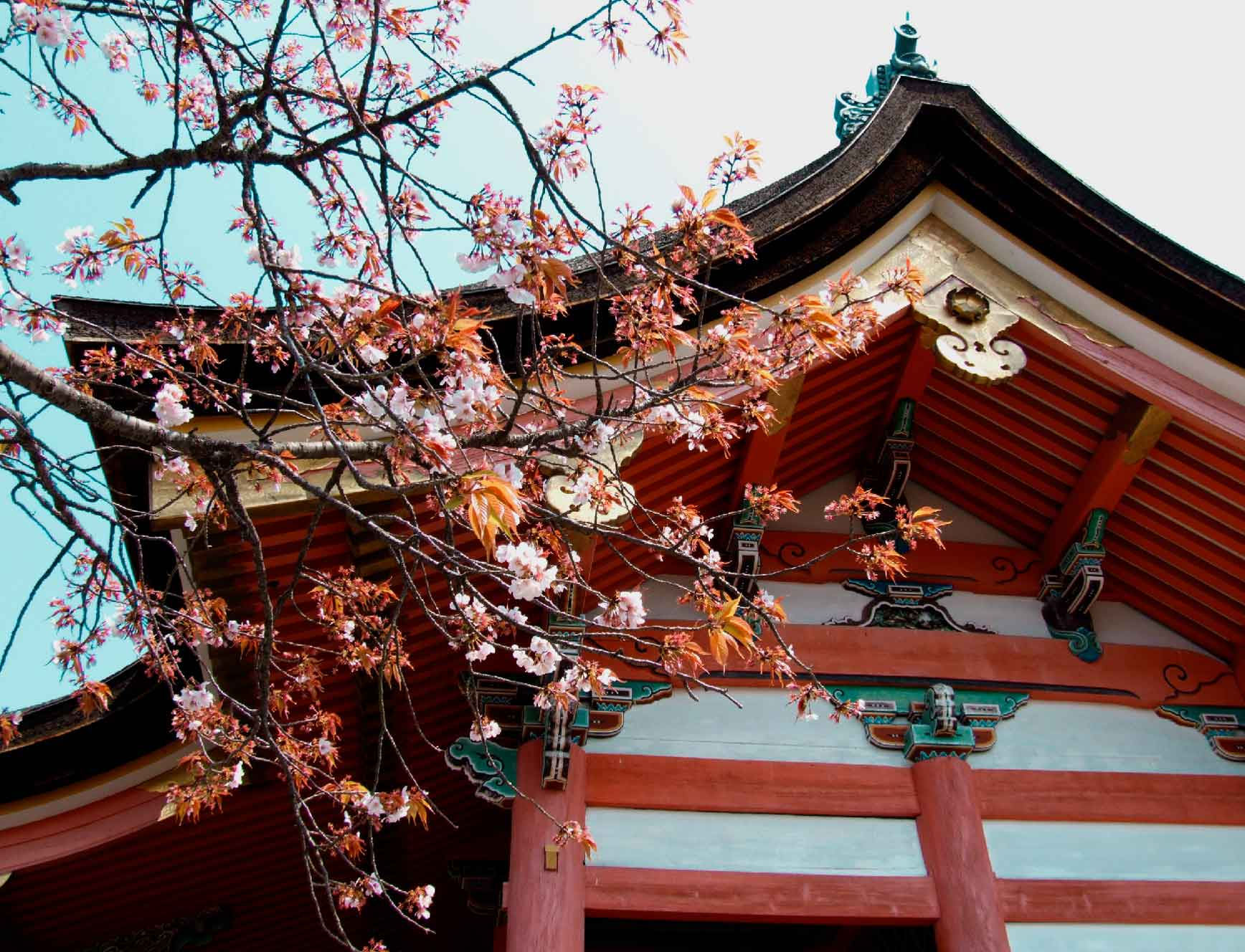 fotografia-clarabmartin-Kyoto