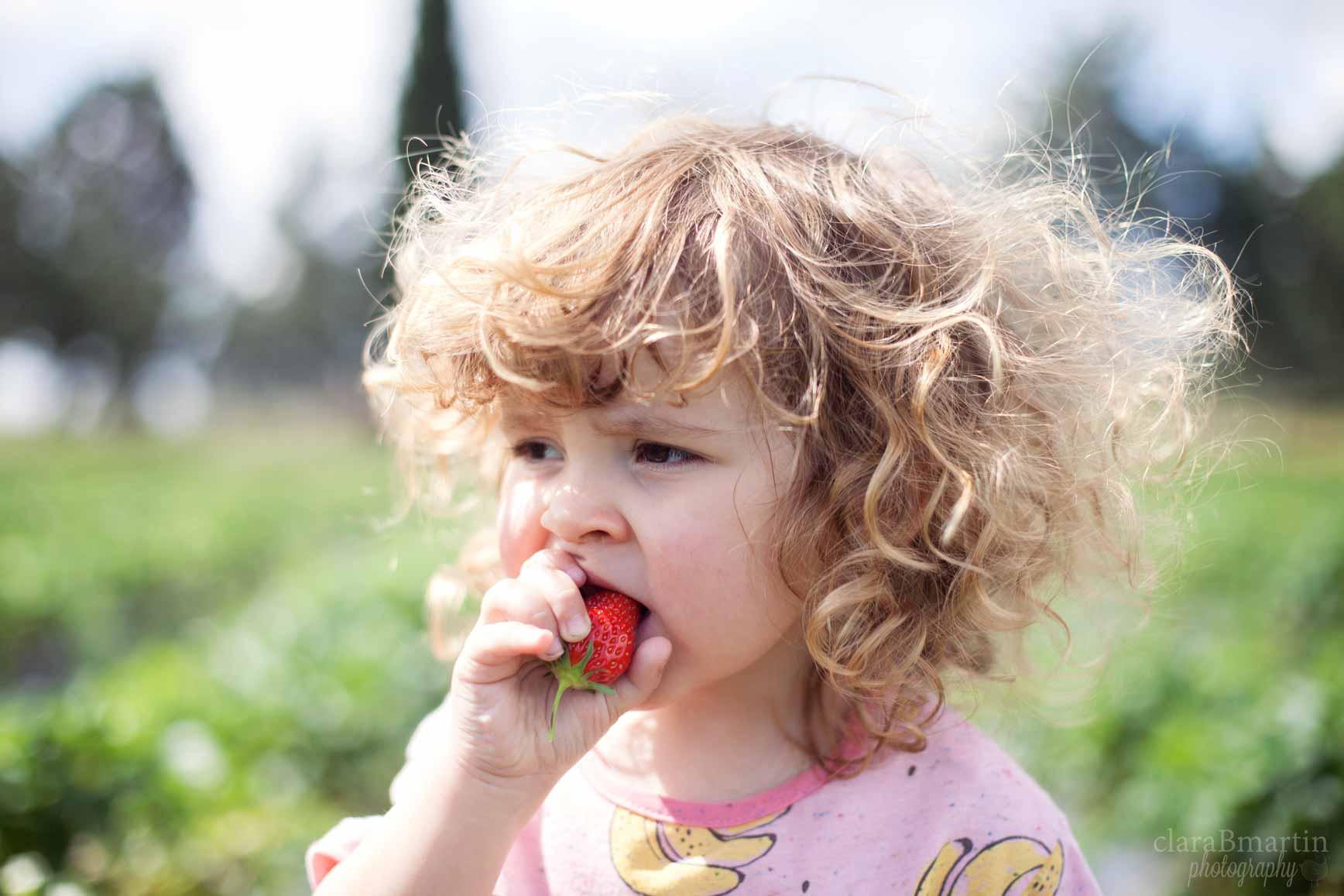 Recolecta-fresas