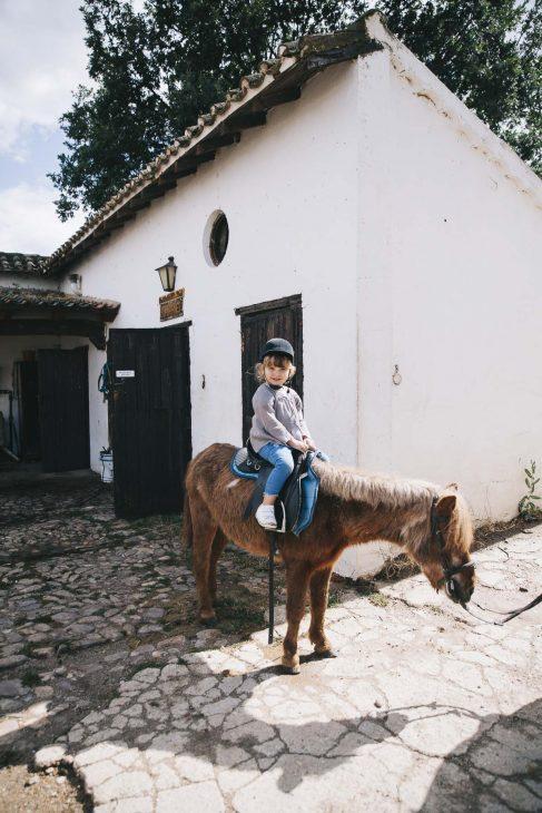 Ruta a caballo con niños: ¡el planazo del verano!