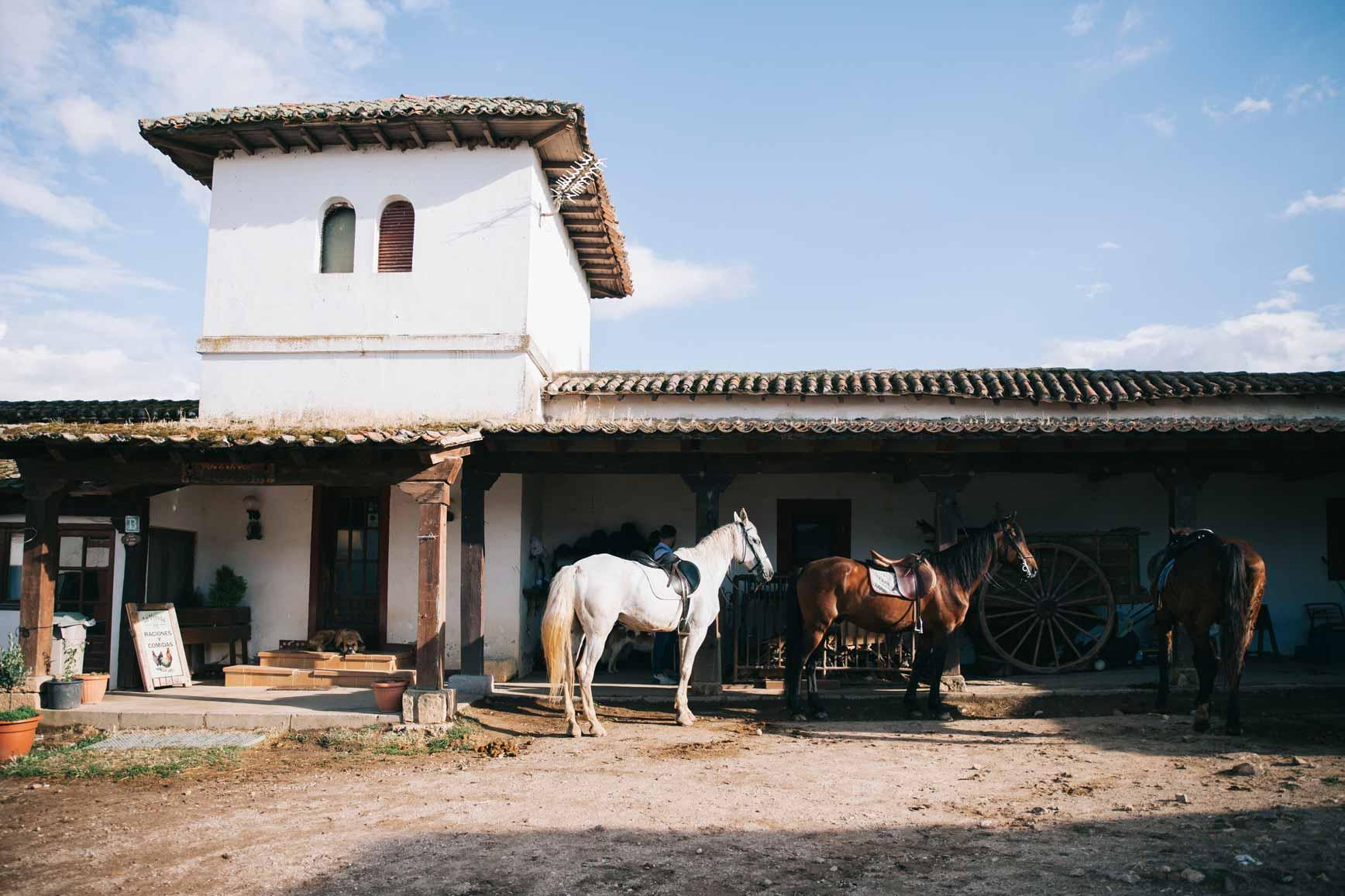 Ruta a Caballo - Caballos La Vereda_claraBmartin_46