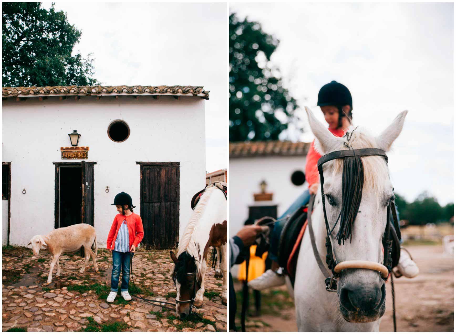 Ruta a Caballo - Caballos La Vereda_claraBmartin_50