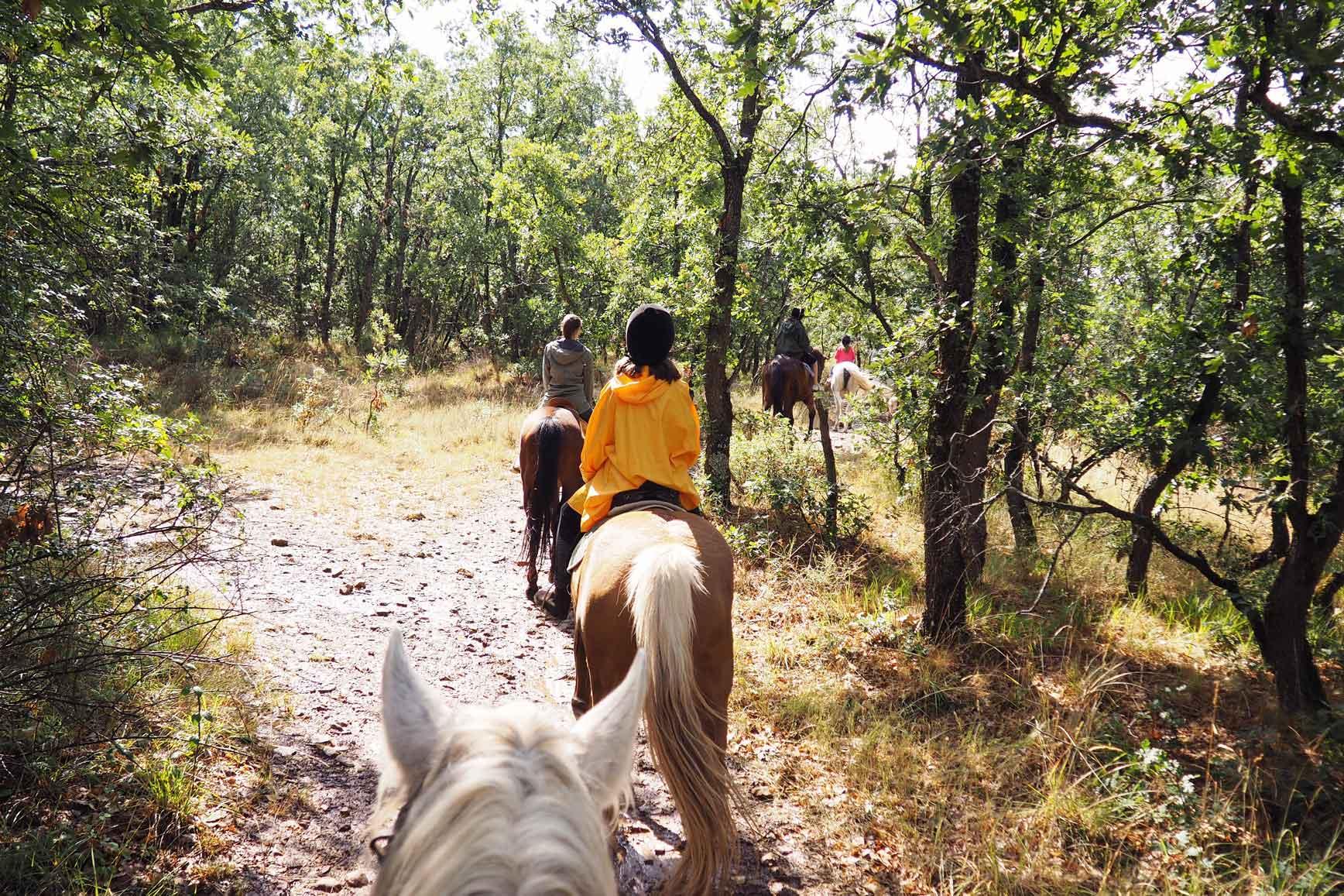 Ruta a Caballo - Caballos La Vereda_claraBmartin_55