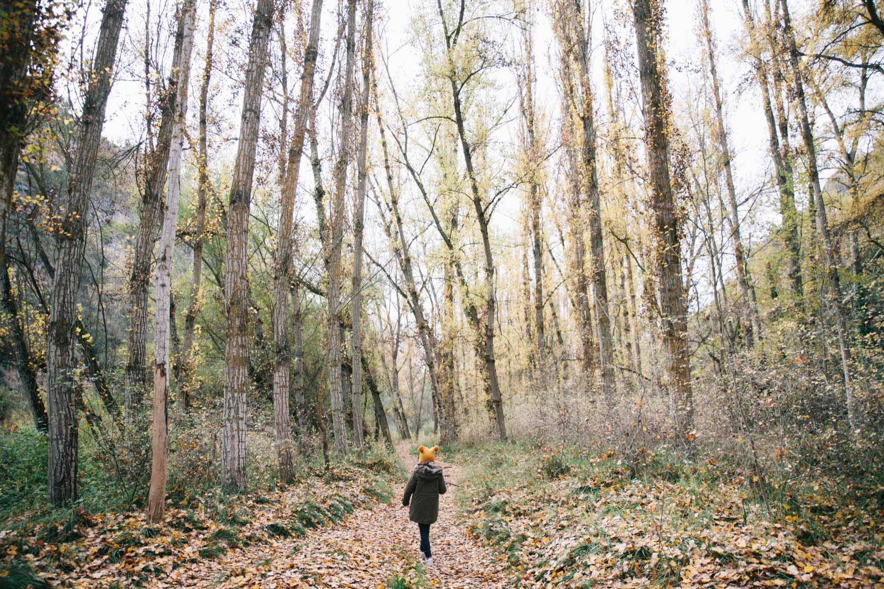 Bosques cerca de Madrid - Hoces del Duratón
