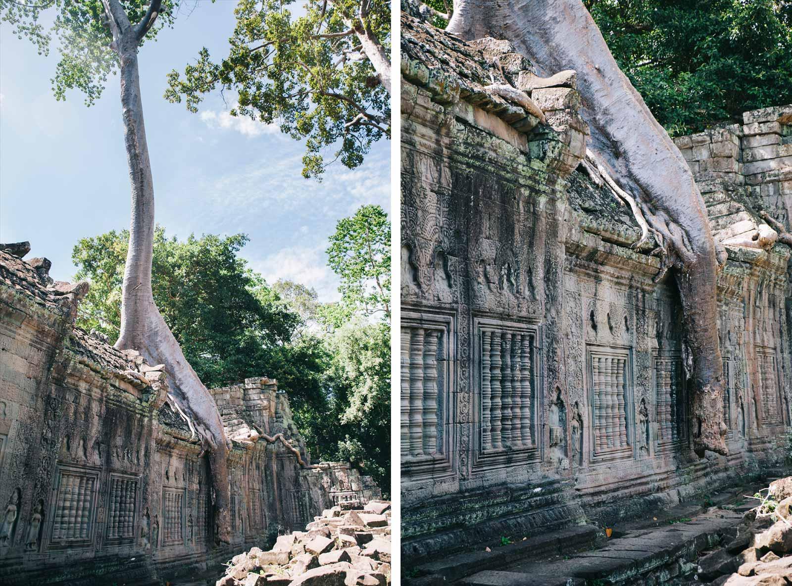 Angkor_with_kids_6