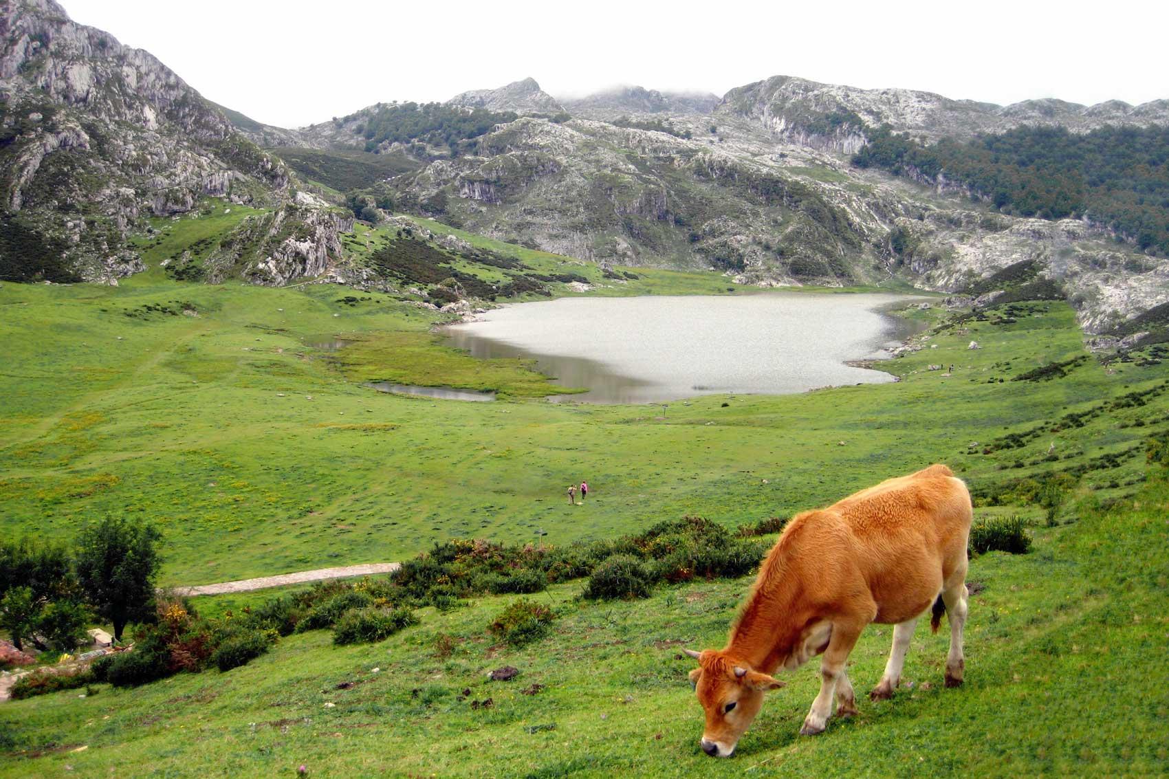 Lagos_Covadonga