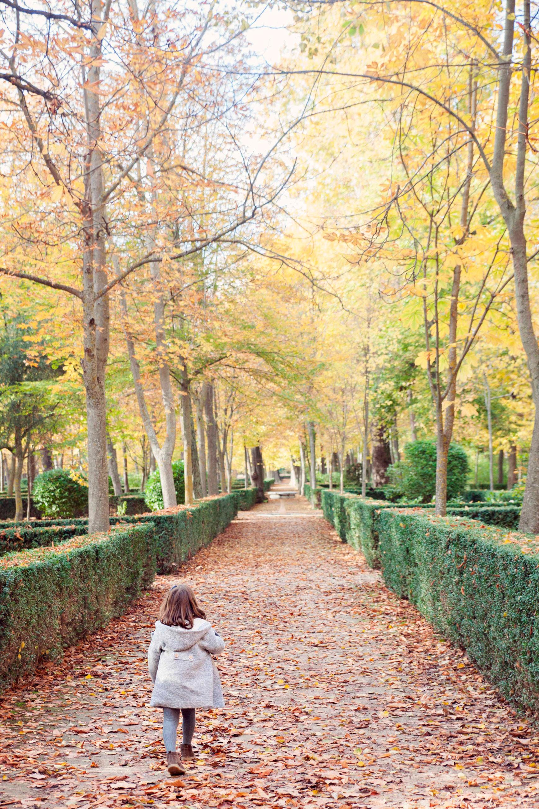 Otoño en Aranjuez