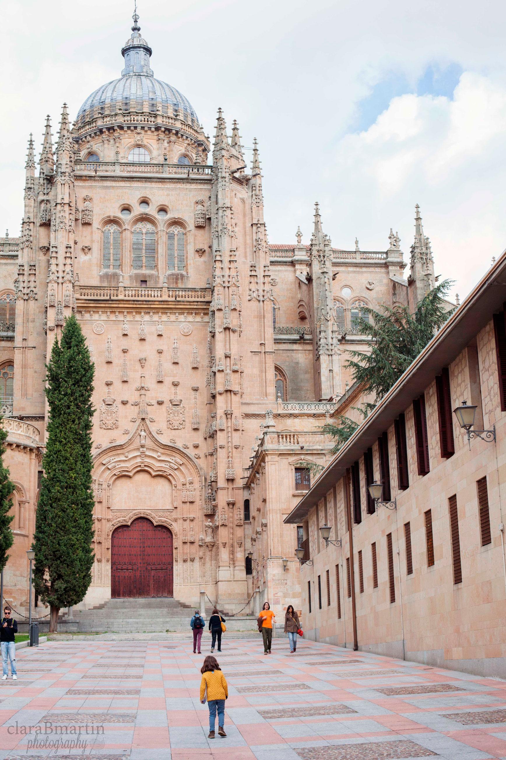 Descubriendo Salamanca