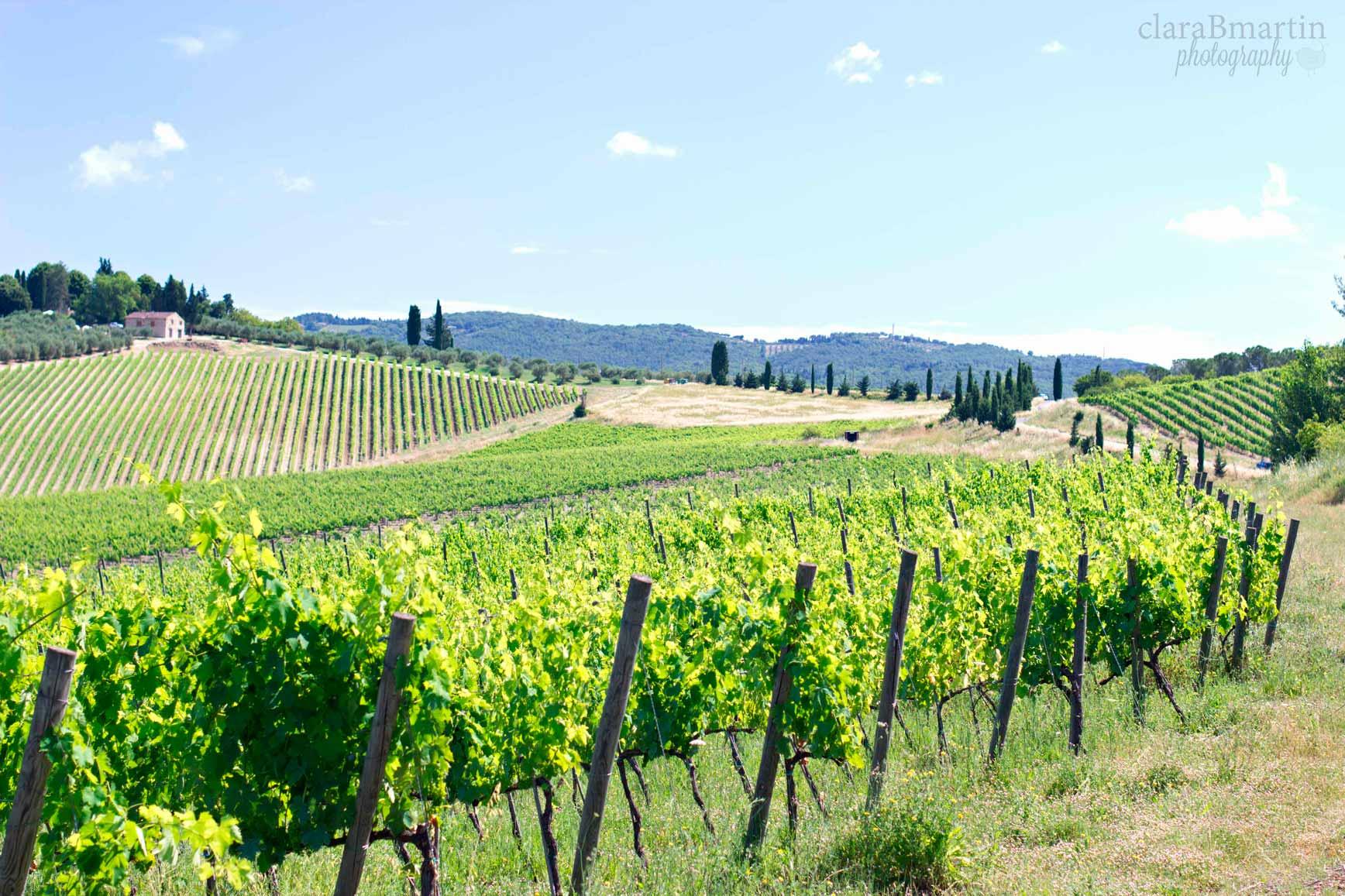 ToscanaclaraBmartin_04