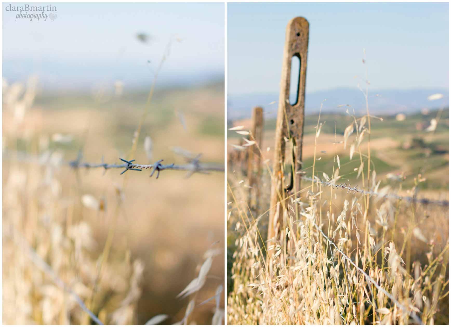 Tuscany_claraBmartin_Collage