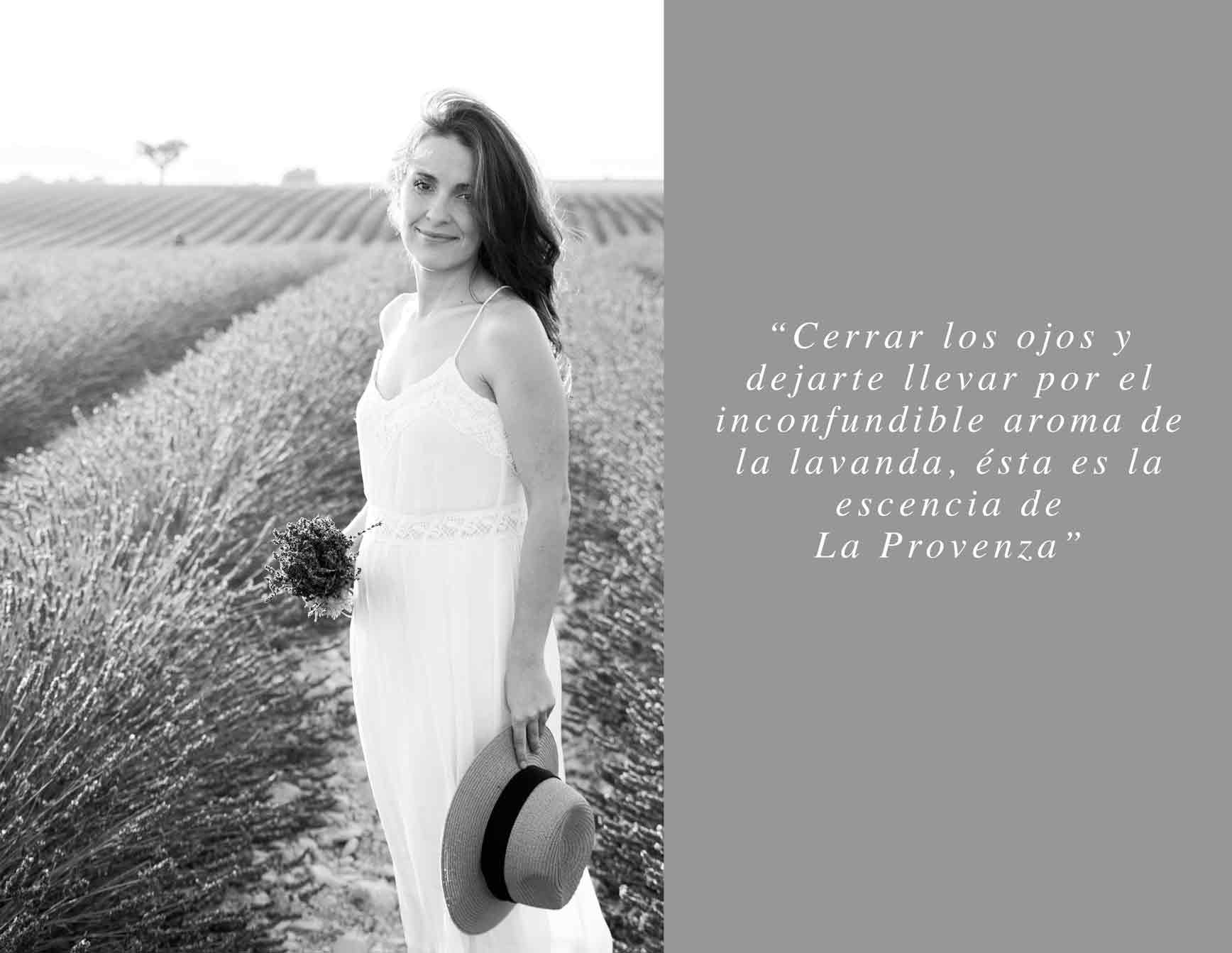 Lavender-fields-Provence-claraBmartin01