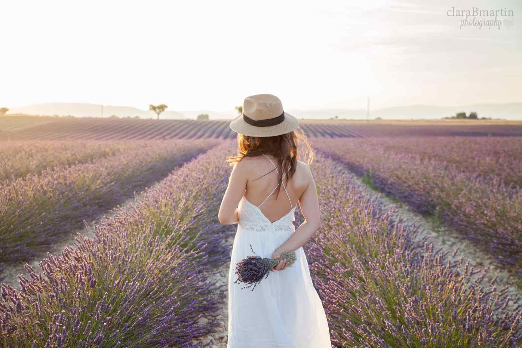 Lavender-fields-Provence-claraBmartin08