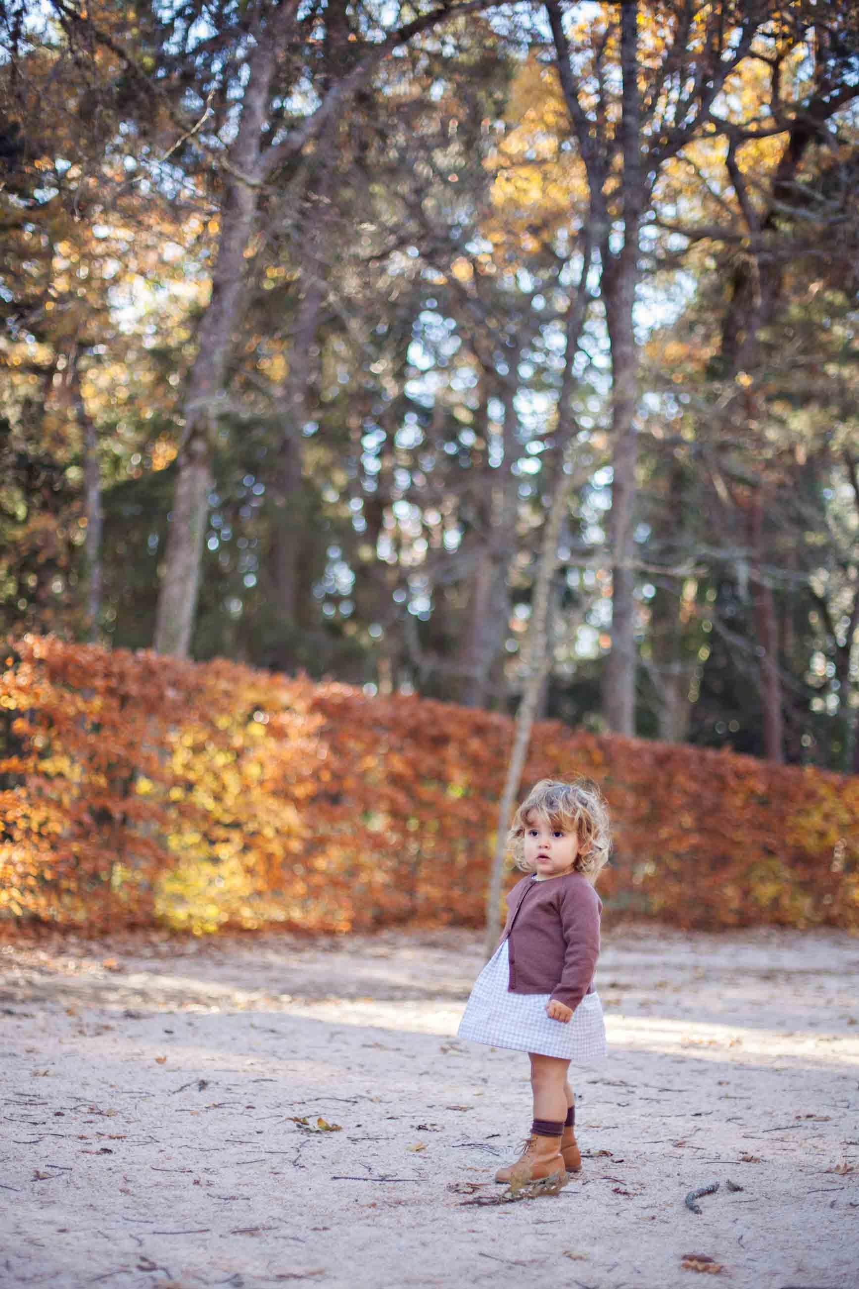Veroño en La Granja de San Ildefonso
