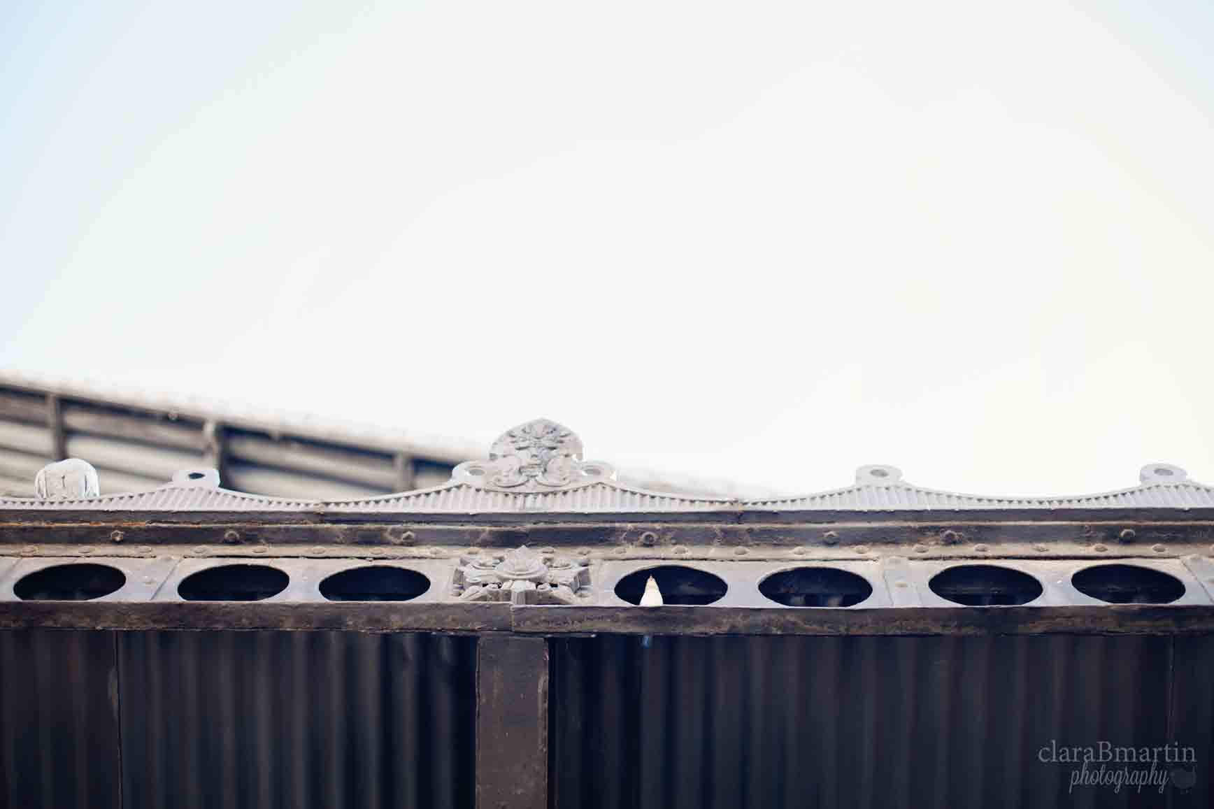 Mercado-de-motores-clarabmartin-14