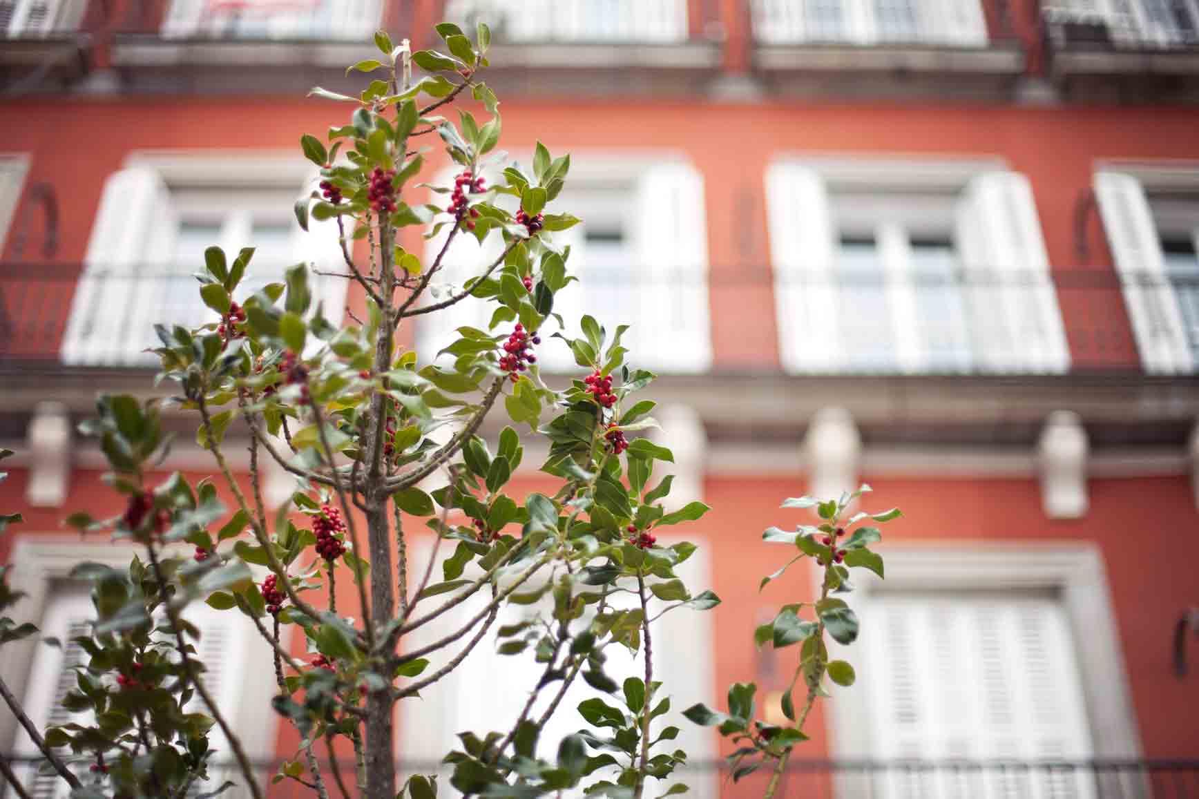 Navidad-en-Madrid-claraBmartin-09