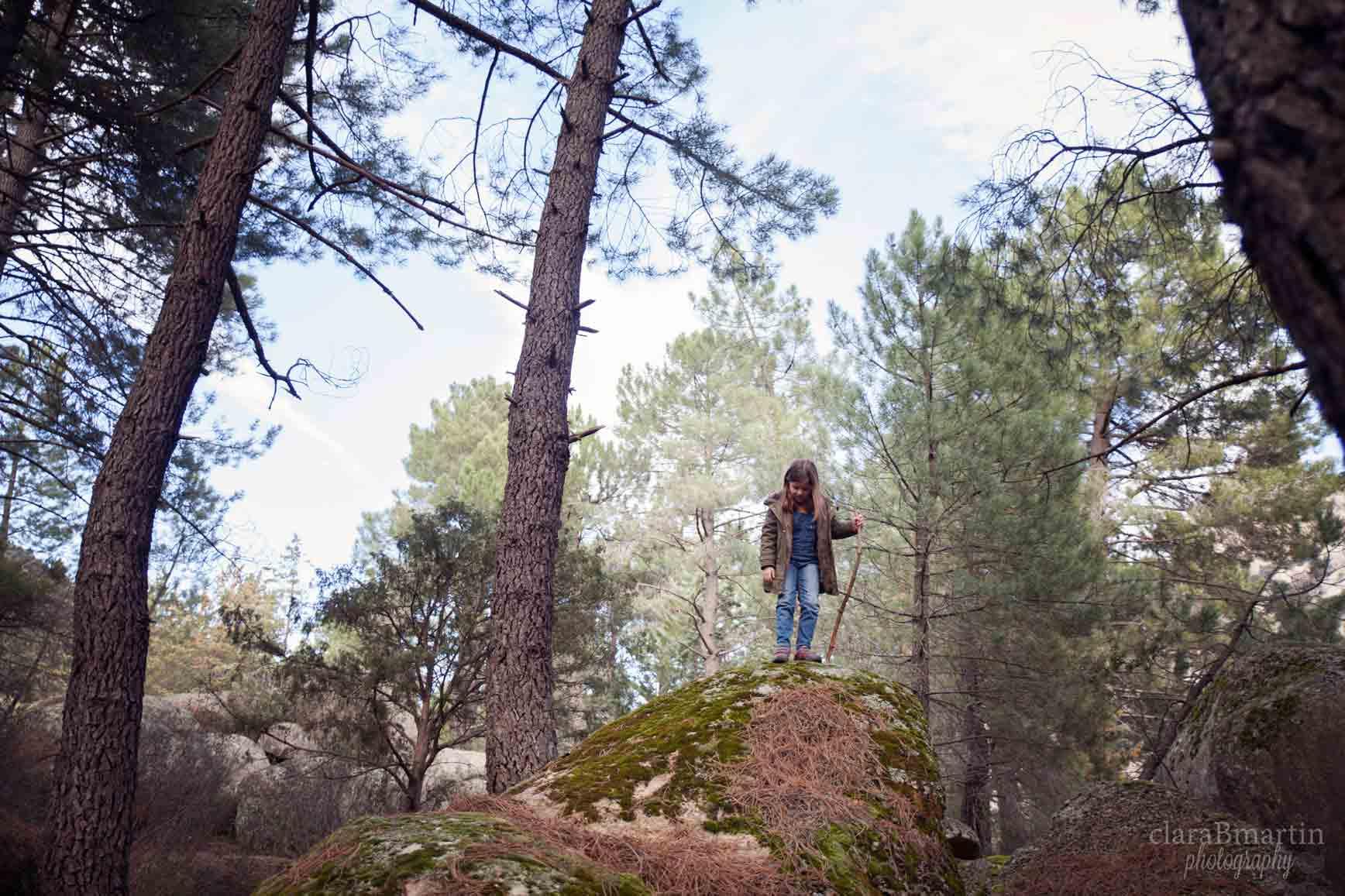 Bosques en Madrid para ir con niños - La Pedriza