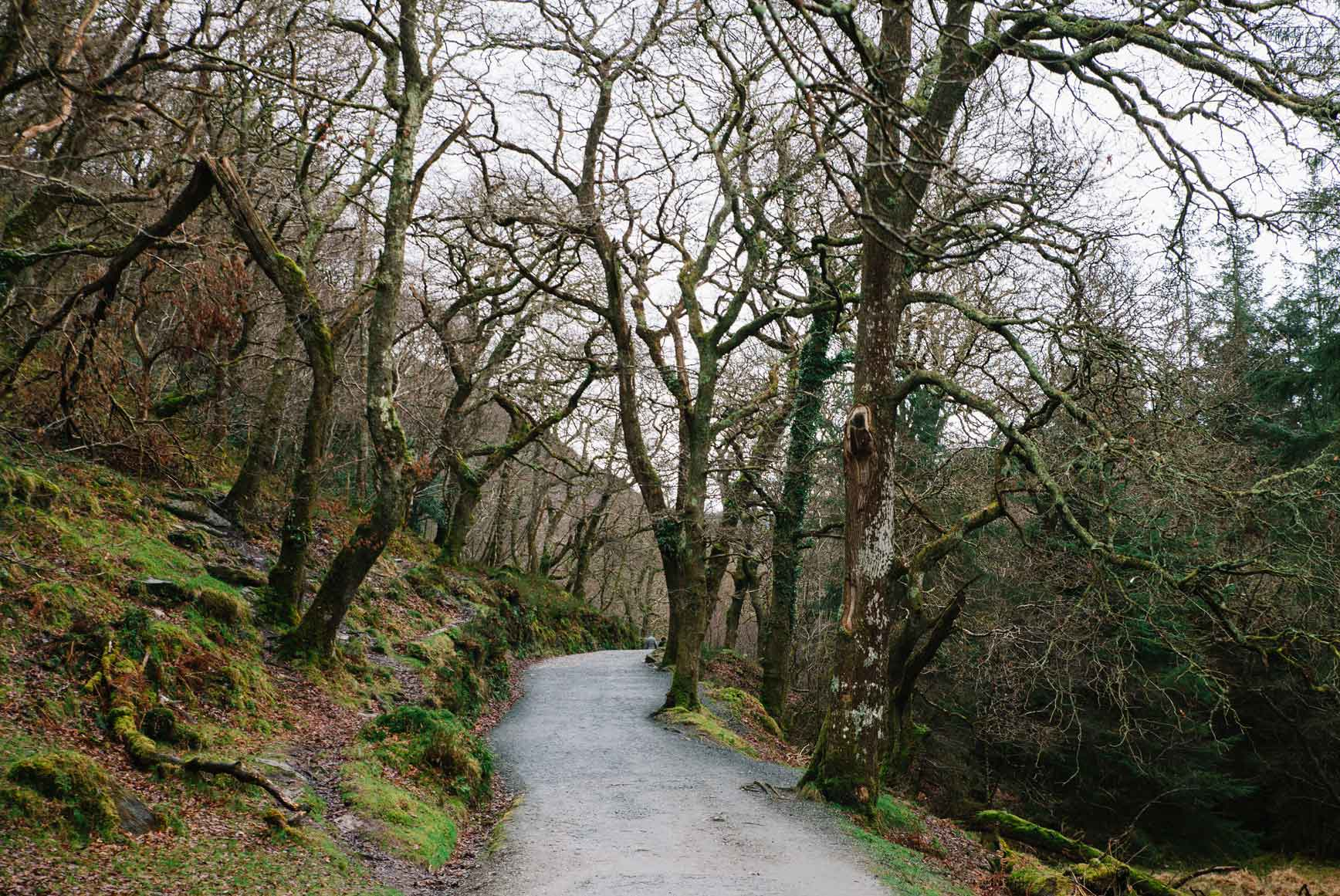Glendalough-Irlanda-claraBmartin-14