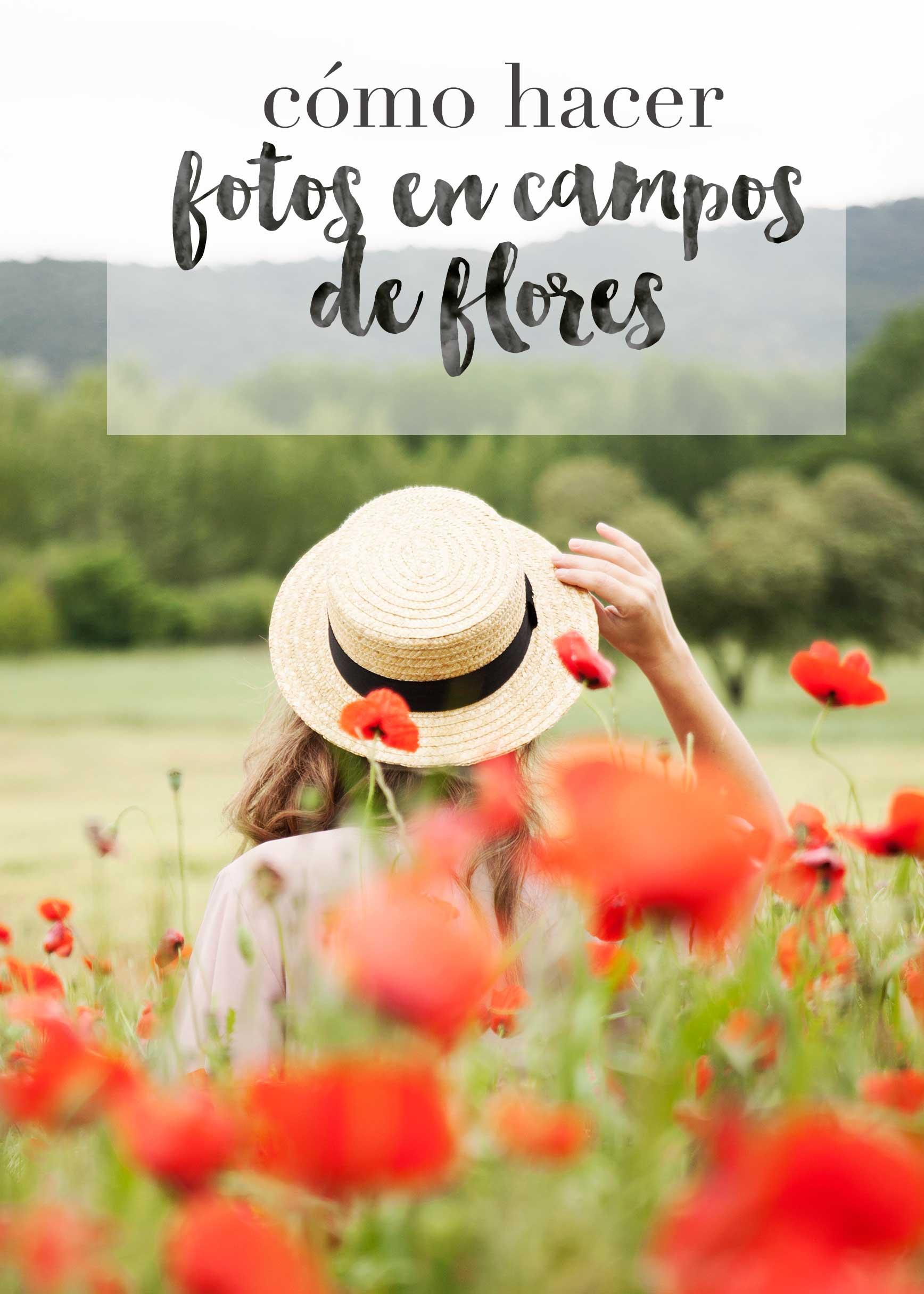 Fotos en campos de flores