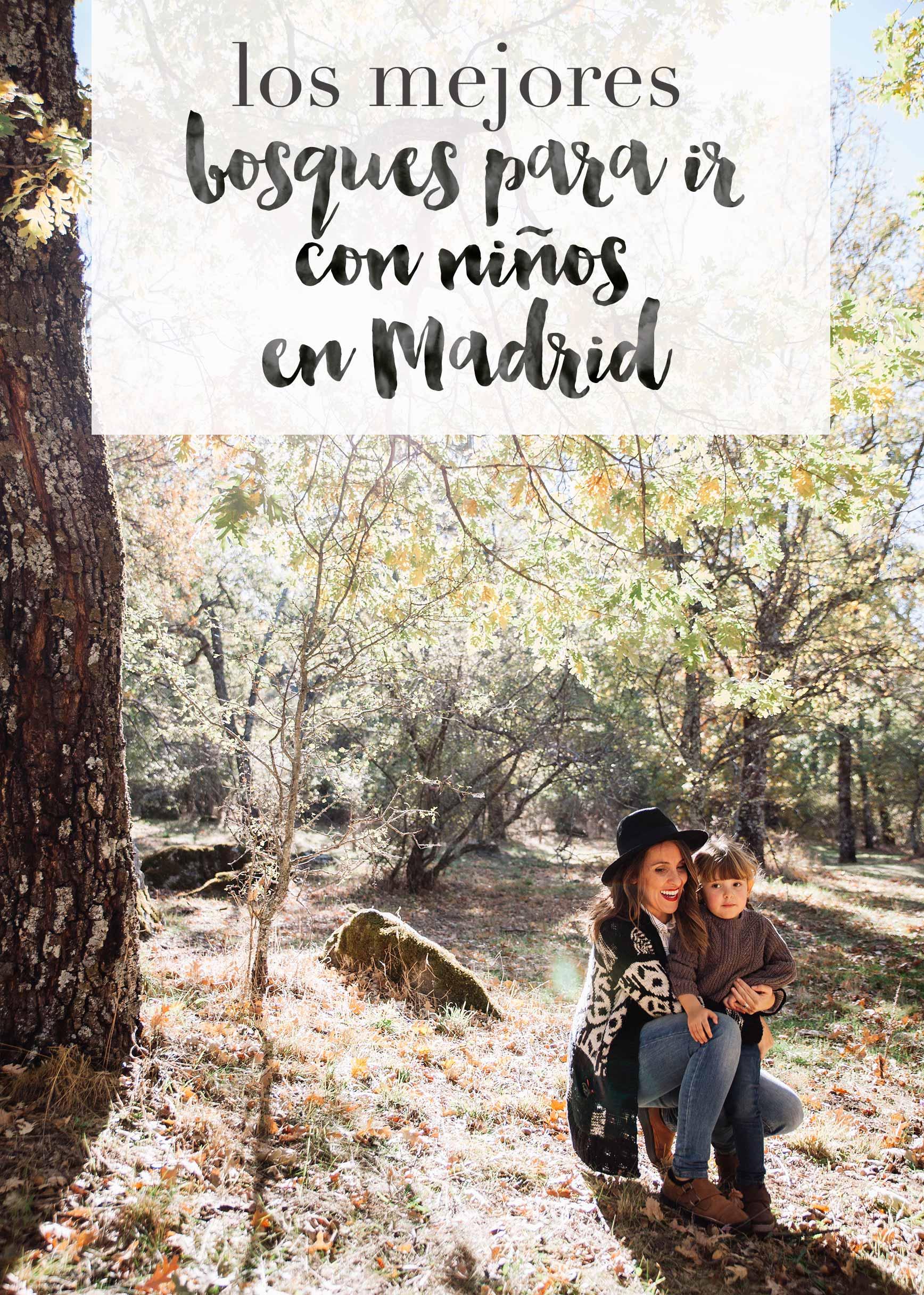 Bosques cerca de Madrid para ir con niños