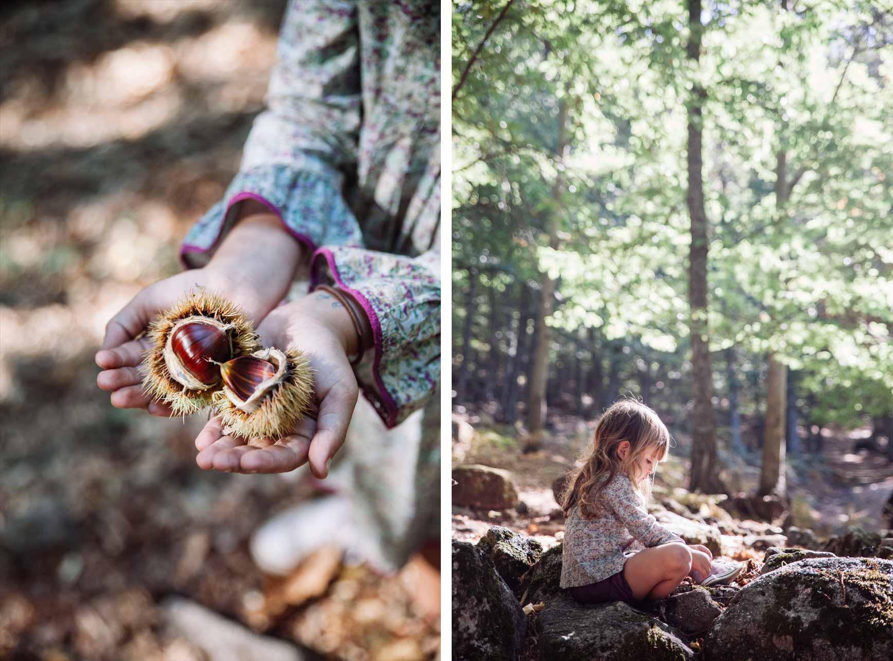 Bosques cerca de Madrid para ir con niños - El Castañar de El Tiemblo