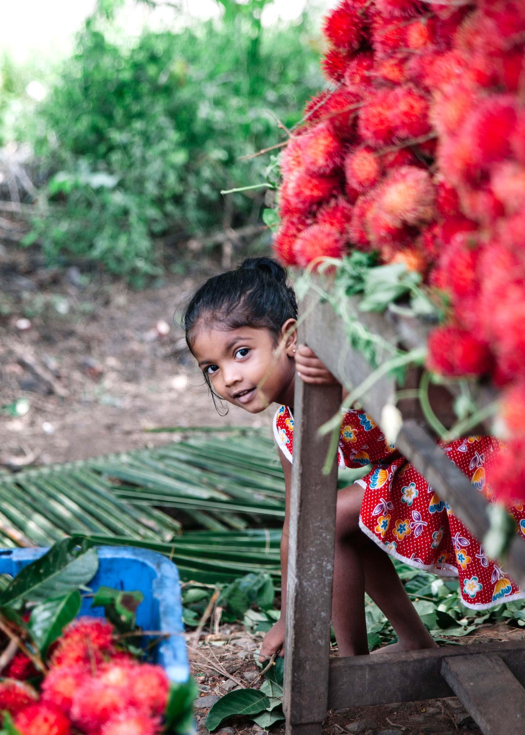 Sri-Lanka_568
