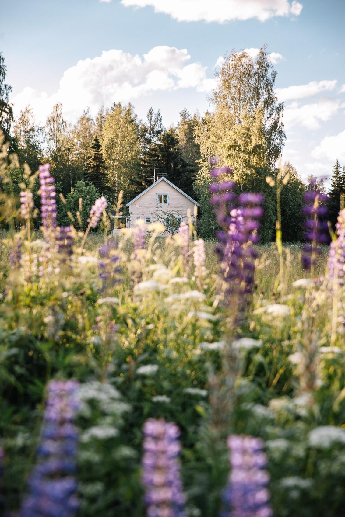 Lago Saimaa - Finland